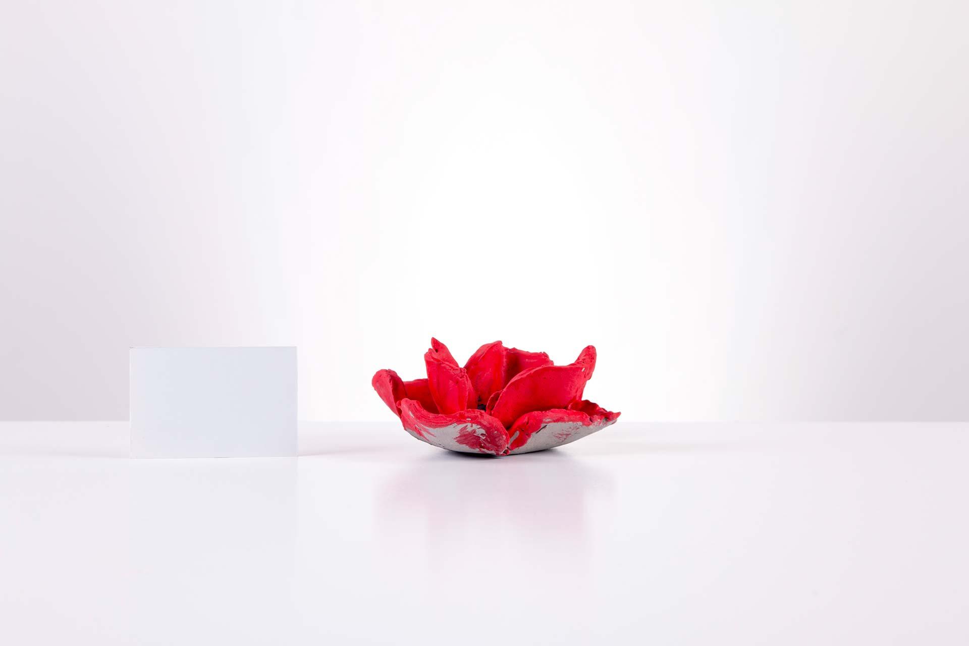 Poppy 2